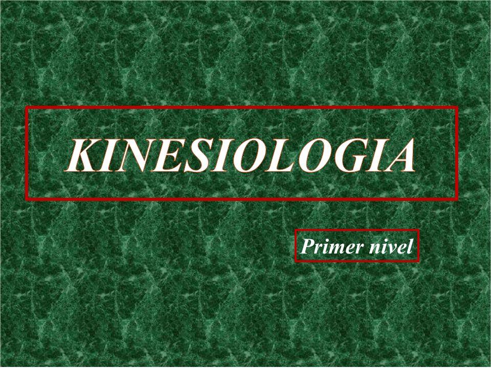 KINESIOLOGIA Primer nivel
