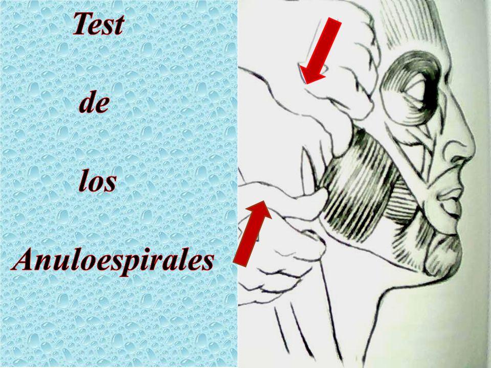 Test de los Anuloespirales