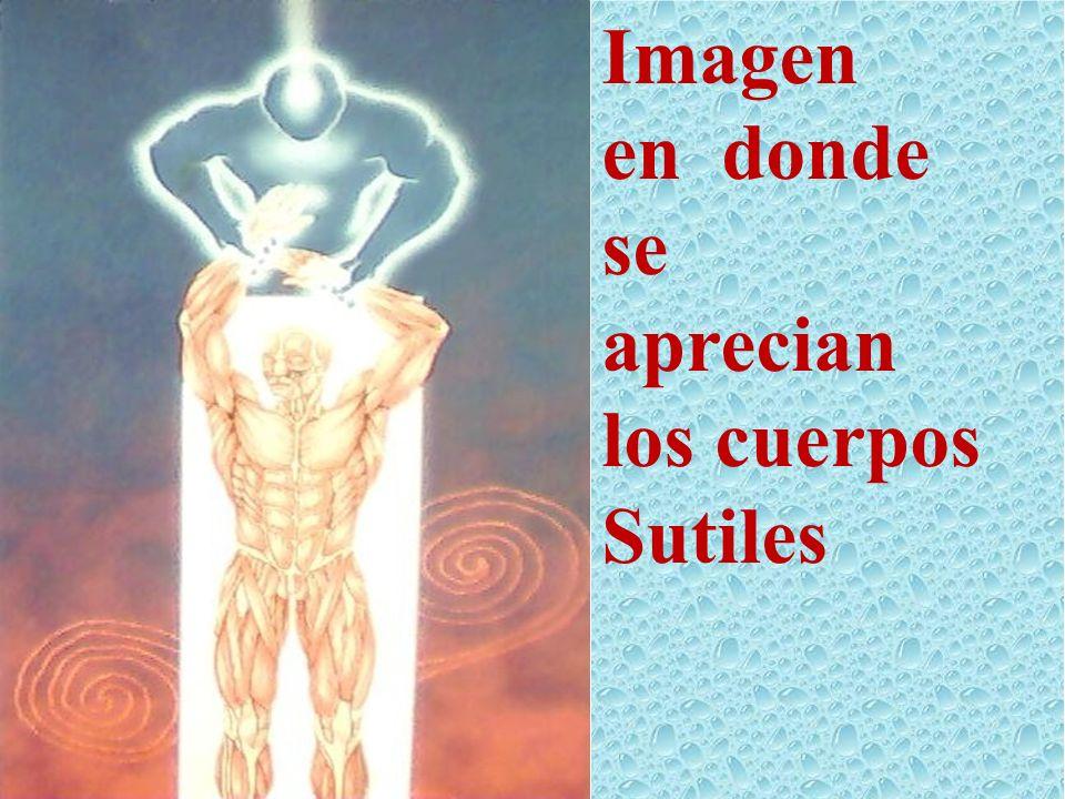 Imagen en donde se aprecian los cuerpos Sutiles