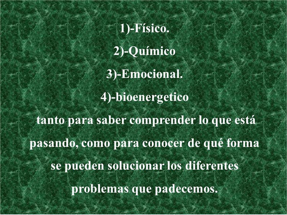 1)-Físico. 2)-Químico. 3)-Emocional. 4)-bioenergetico.