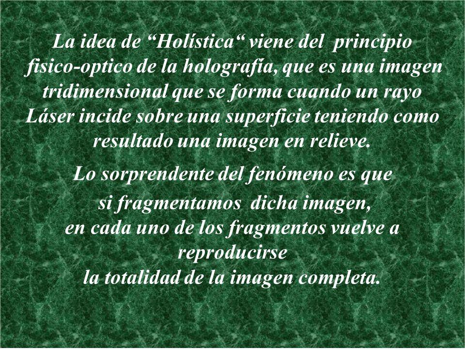 La idea de Holística viene del principio