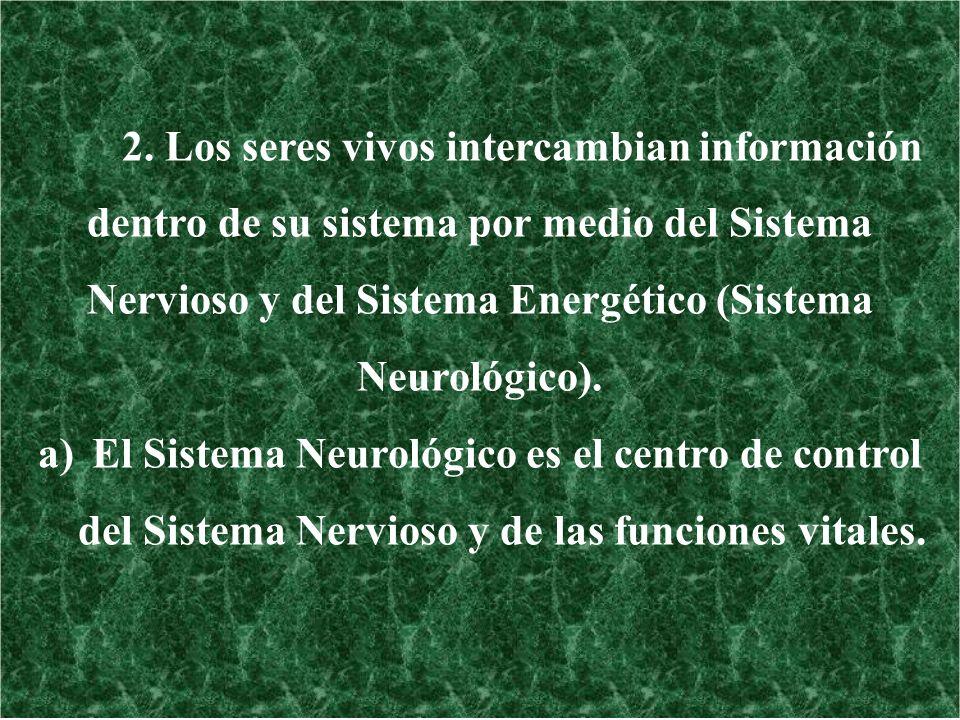 El Sistema Neurológico es el centro de control
