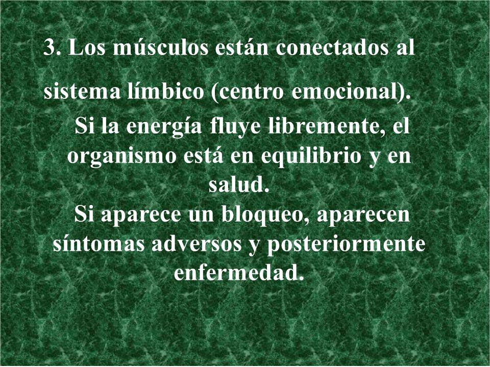 3. Los músculos están conectados al sistema límbico (centro emocional).