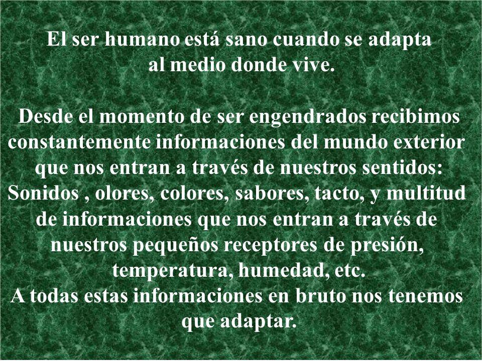 El ser humano está sano cuando se adapta al medio donde vive.