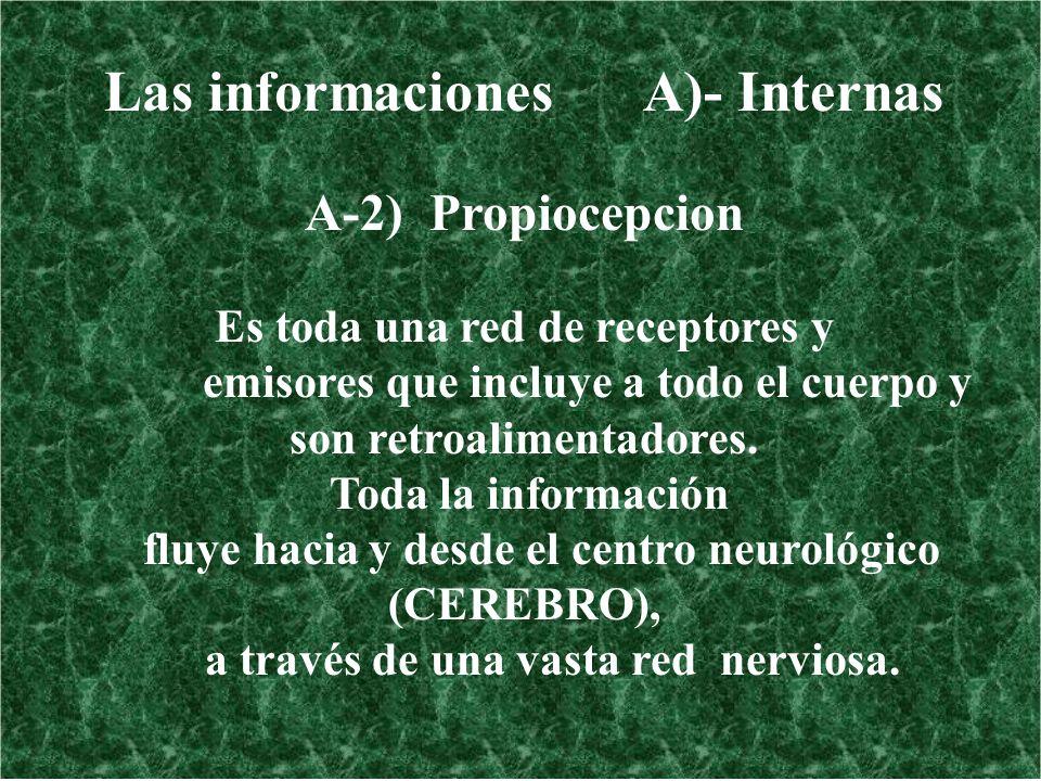 Las informaciones A)- Internas
