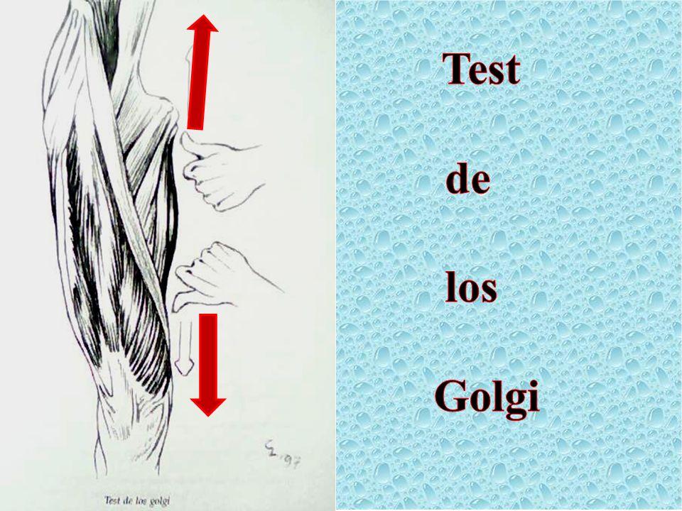 Test de los Golgi Test de los Golgi