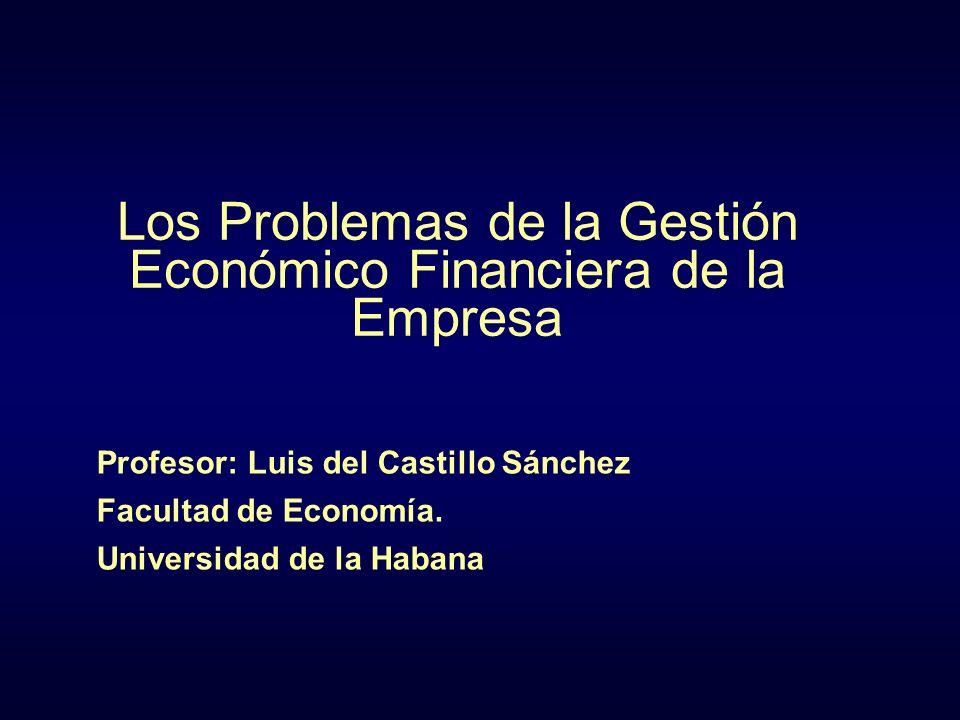Los Problemas de la Gestión Económico Financiera de la Empresa