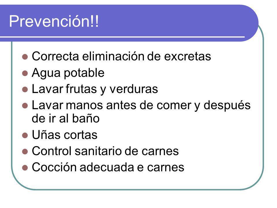 Prevención!! Correcta eliminación de excretas Agua potable