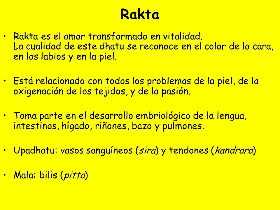 RaktaRakta es el amor transformado en vitalidad. La cualidad de este dhatu se reconoce en el color de la cara, en los labios y en la piel.