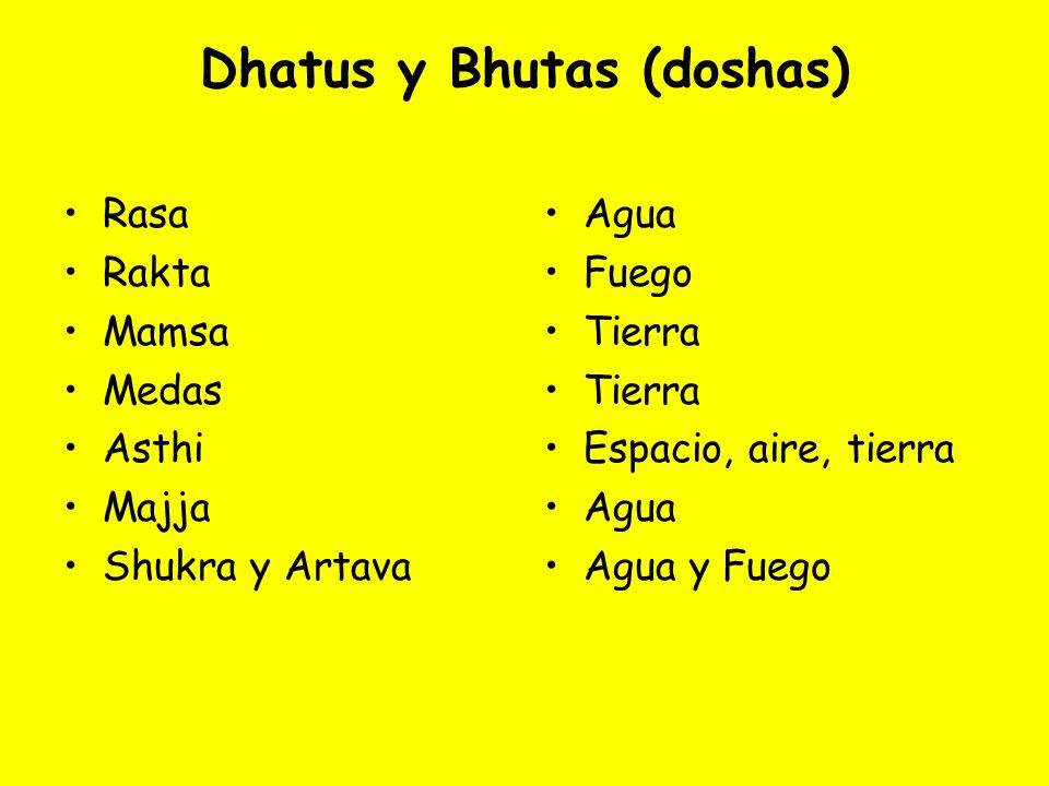Dhatus y Bhutas (doshas)