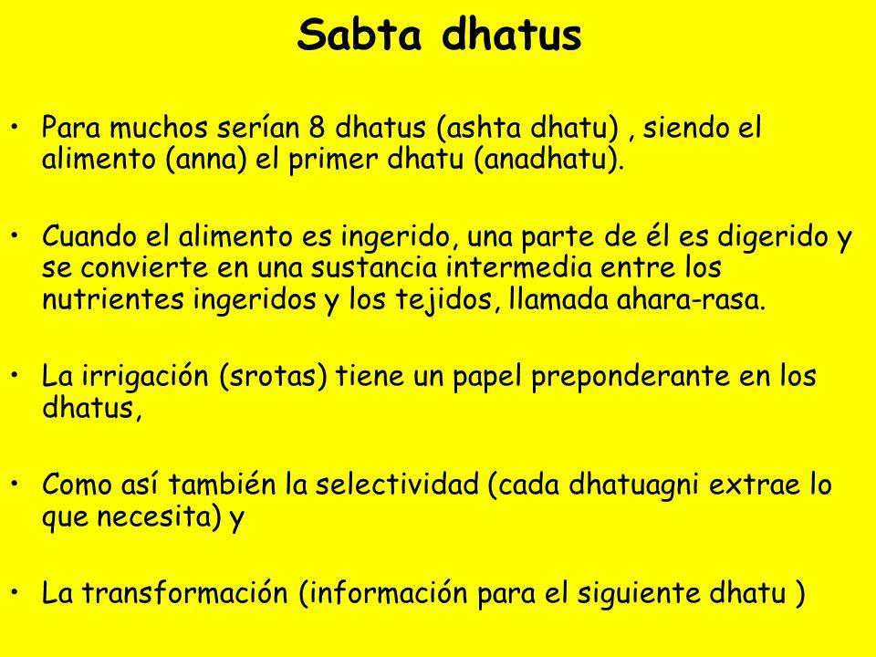 Sabta dhatus Para muchos serían 8 dhatus (ashta dhatu) , siendo el alimento (anna) el primer dhatu (anadhatu).