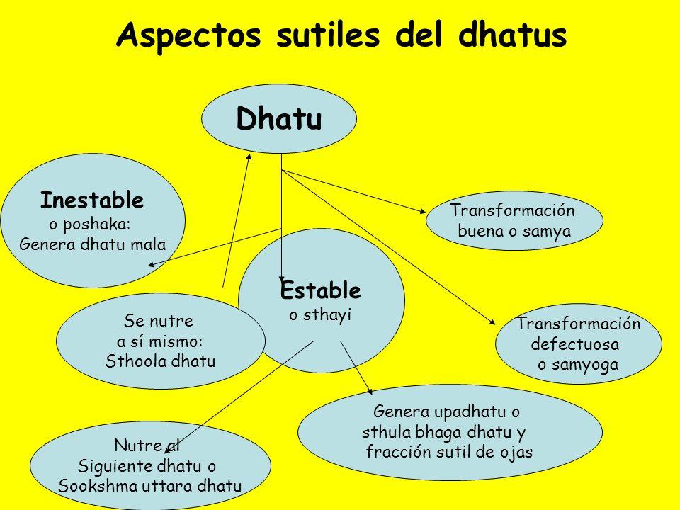 Aspectos sutiles del dhatus