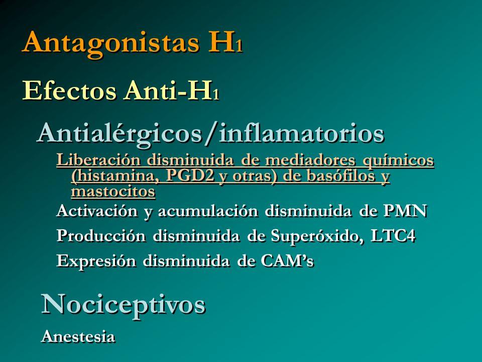 Antagonistas H1 Efectos Anti-H1 Antialérgicos/inflamatorios
