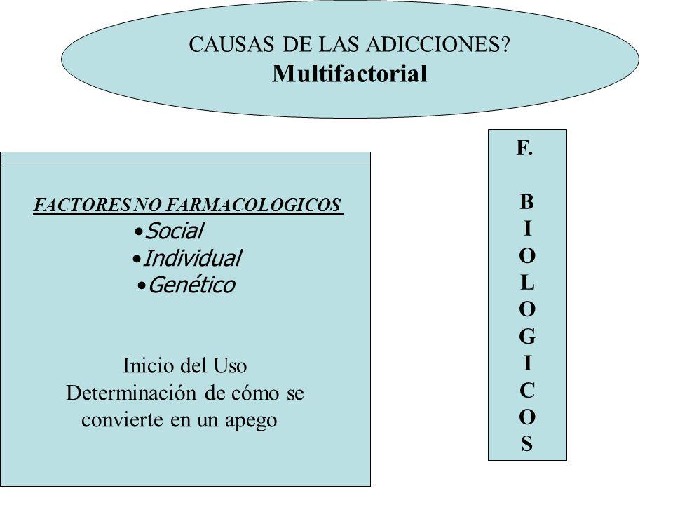Multifactorial CAUSAS DE LAS ADICCIONES F. B I
