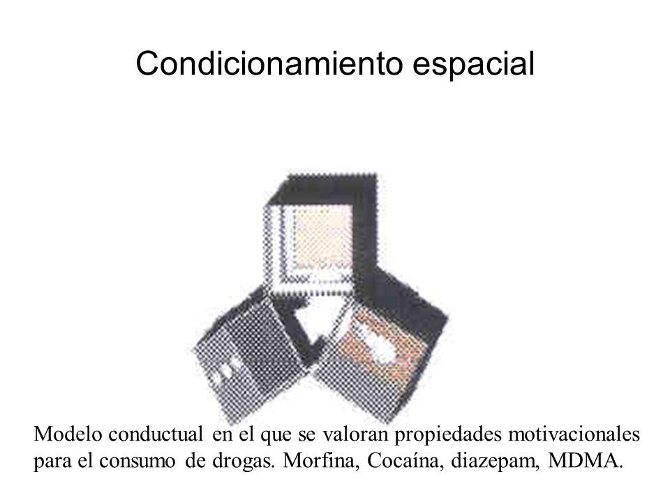 Condicionamiento espacial