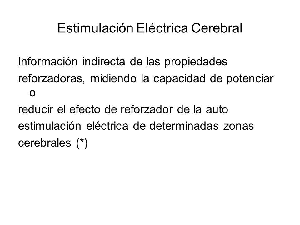 Estimulación Eléctrica Cerebral