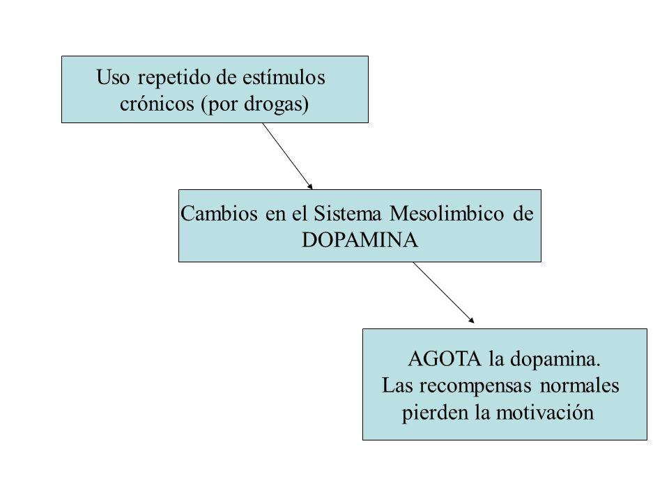 Uso repetido de estímulos crónicos (por drogas)