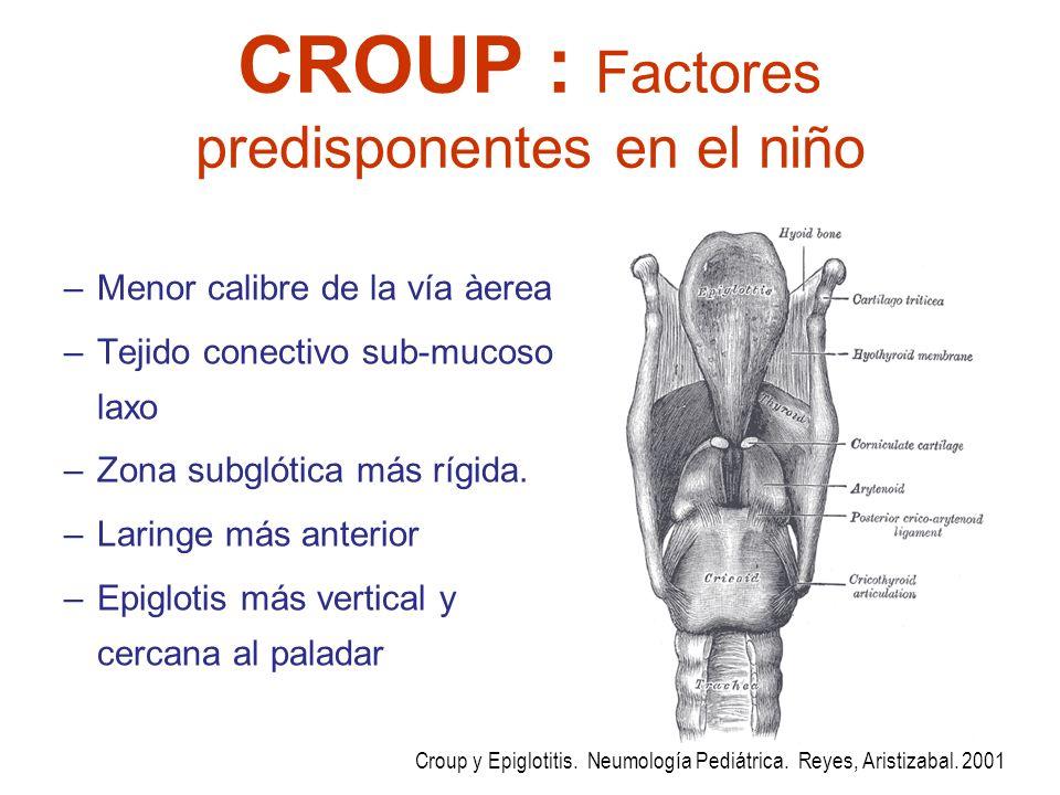 CROUP : Factores predisponentes en el niño