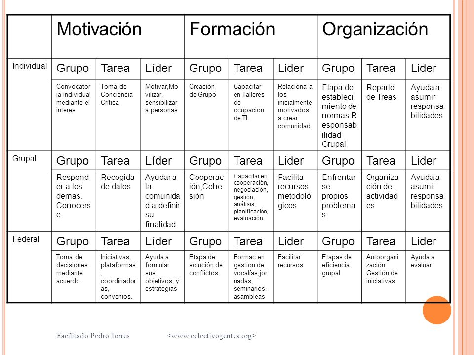 Motivación Formación Organización Grupo Tarea Líder Lider Individual