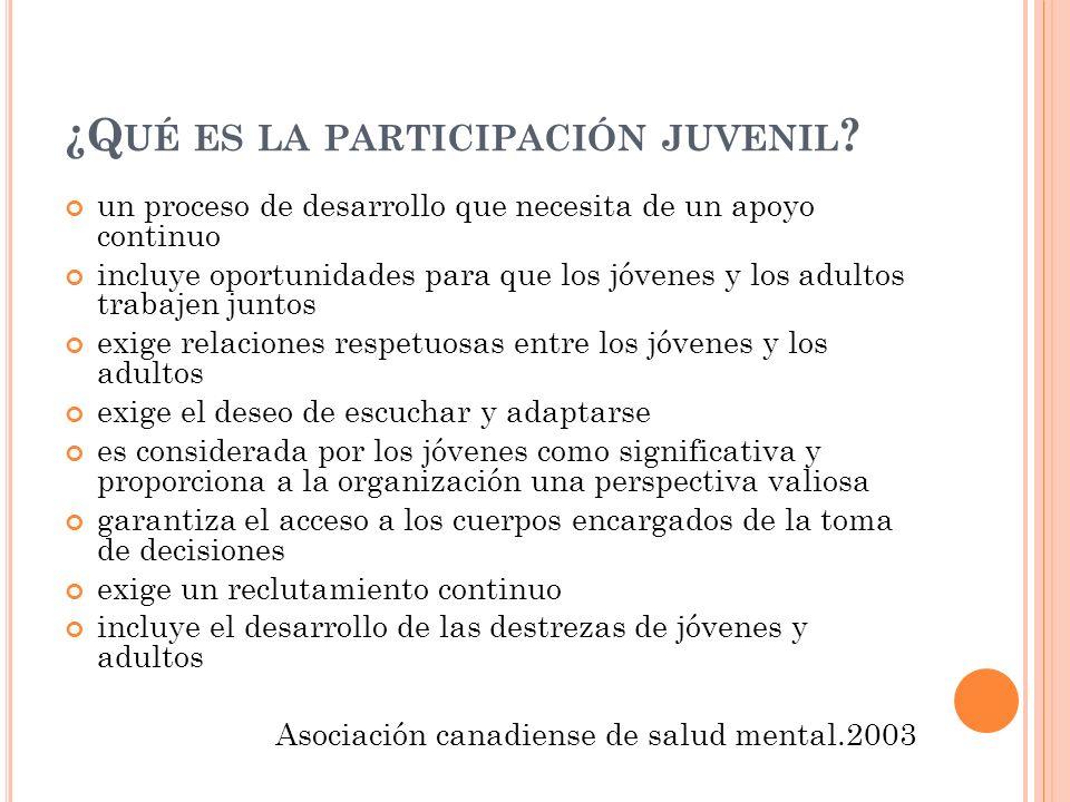 ¿Qué es la participación juvenil