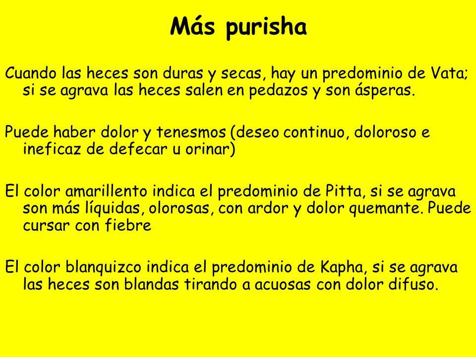 Más purisha Cuando las heces son duras y secas, hay un predominio de Vata; si se agrava las heces salen en pedazos y son ásperas.
