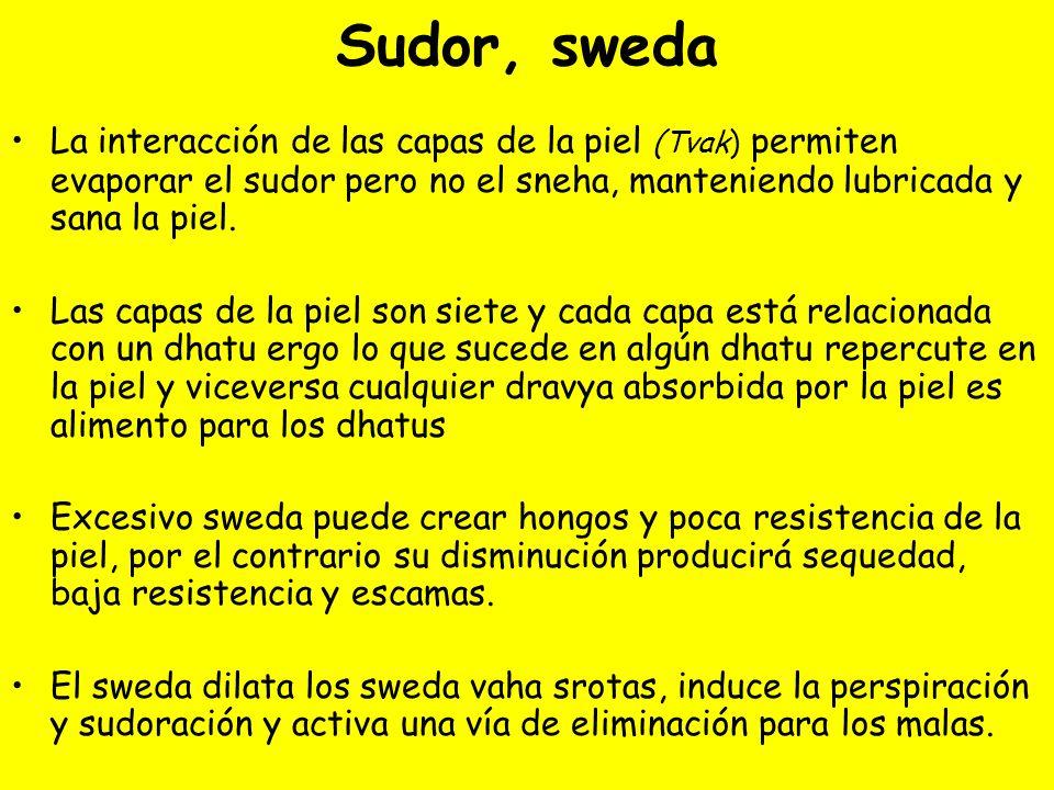 Sudor, sweda La interacción de las capas de la piel (Tvak) permiten evaporar el sudor pero no el sneha, manteniendo lubricada y sana la piel.
