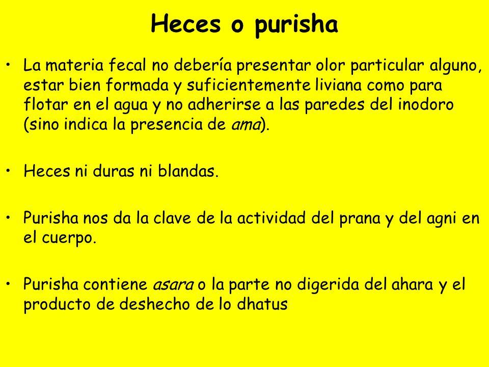 Heces o purisha