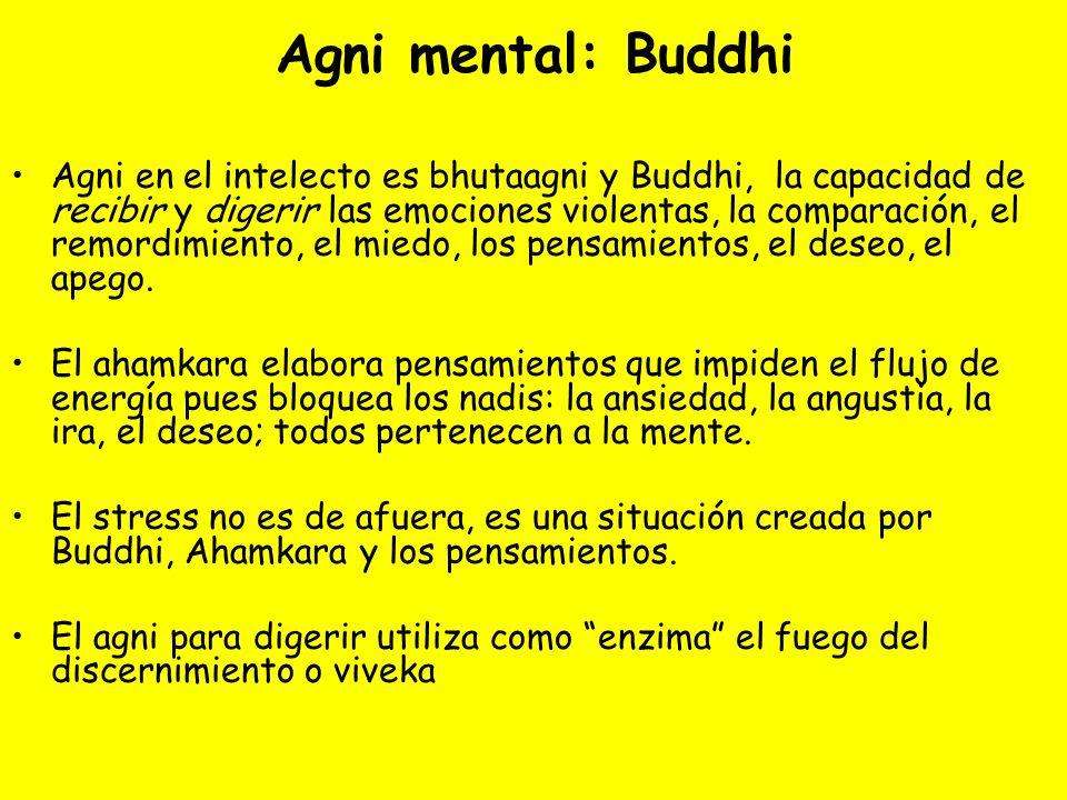 Agni mental: Buddhi