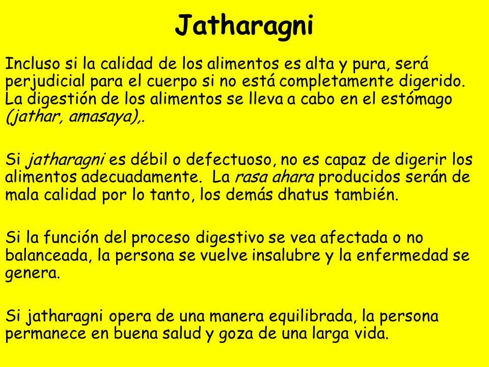 Jatharagni