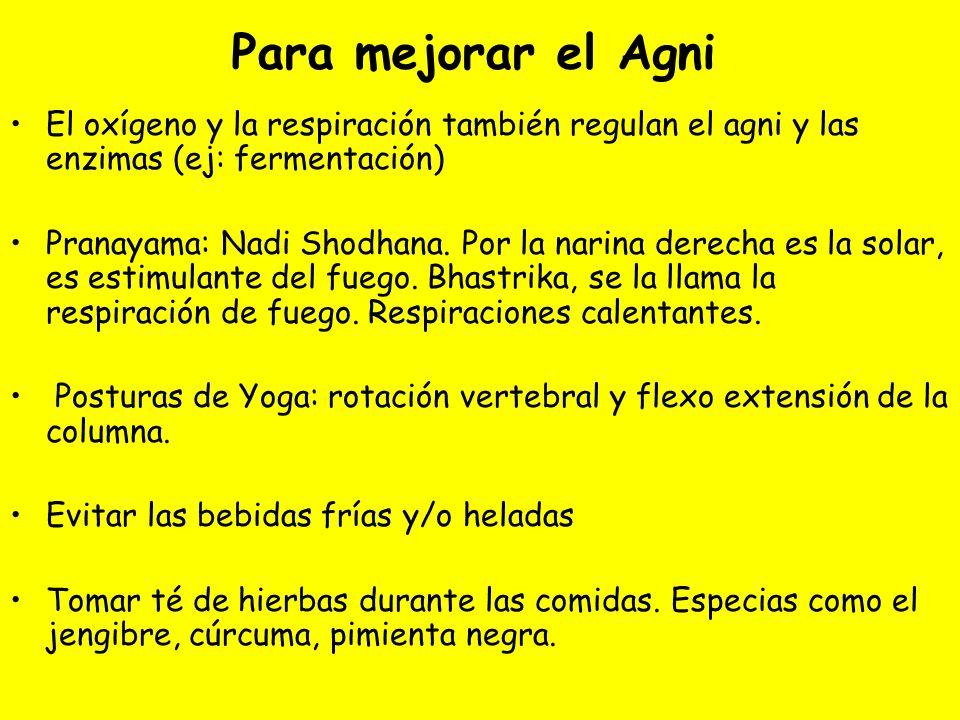 Para mejorar el Agni El oxígeno y la respiración también regulan el agni y las enzimas (ej: fermentación)