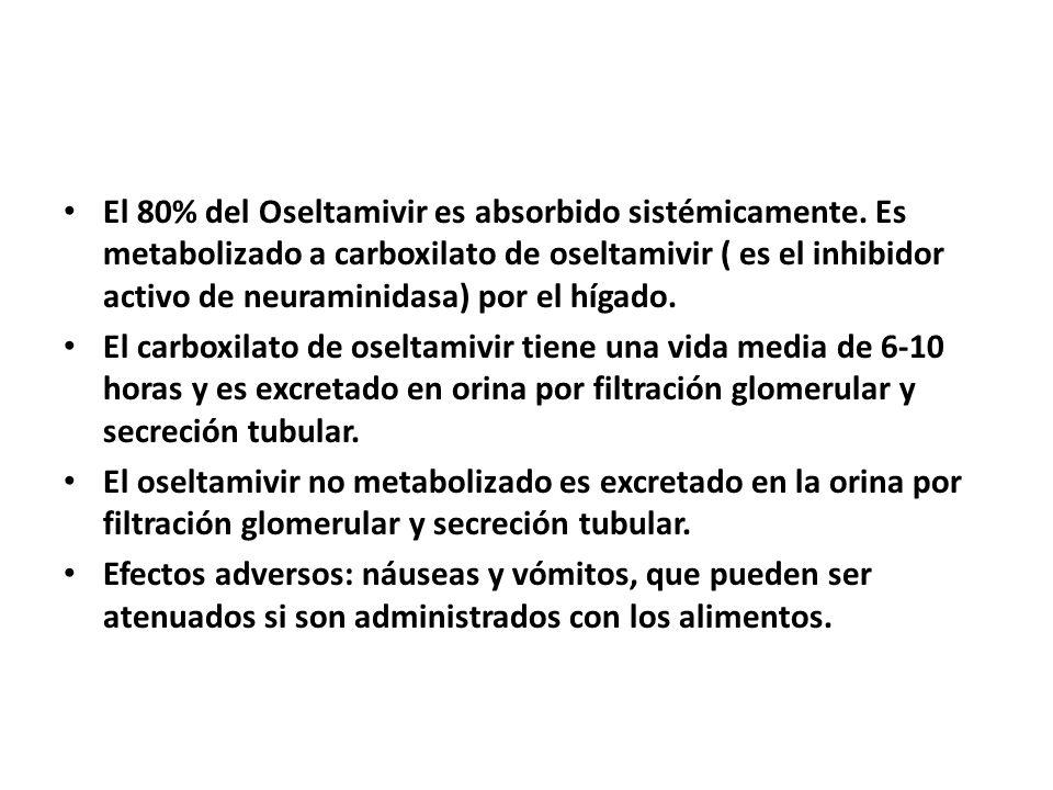 El 80% del Oseltamivir es absorbido sistémicamente