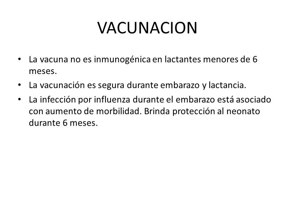VACUNACION La vacuna no es inmunogénica en lactantes menores de 6 meses. La vacunación es segura durante embarazo y lactancia.