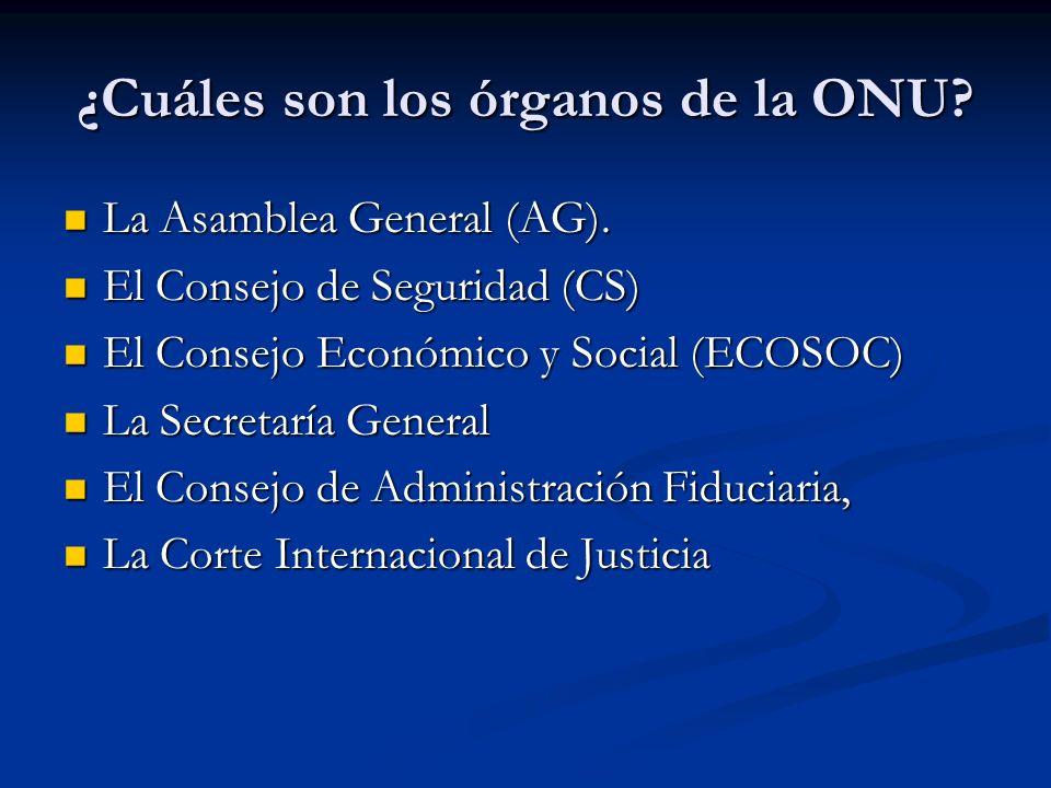 ¿Cuáles son los órganos de la ONU