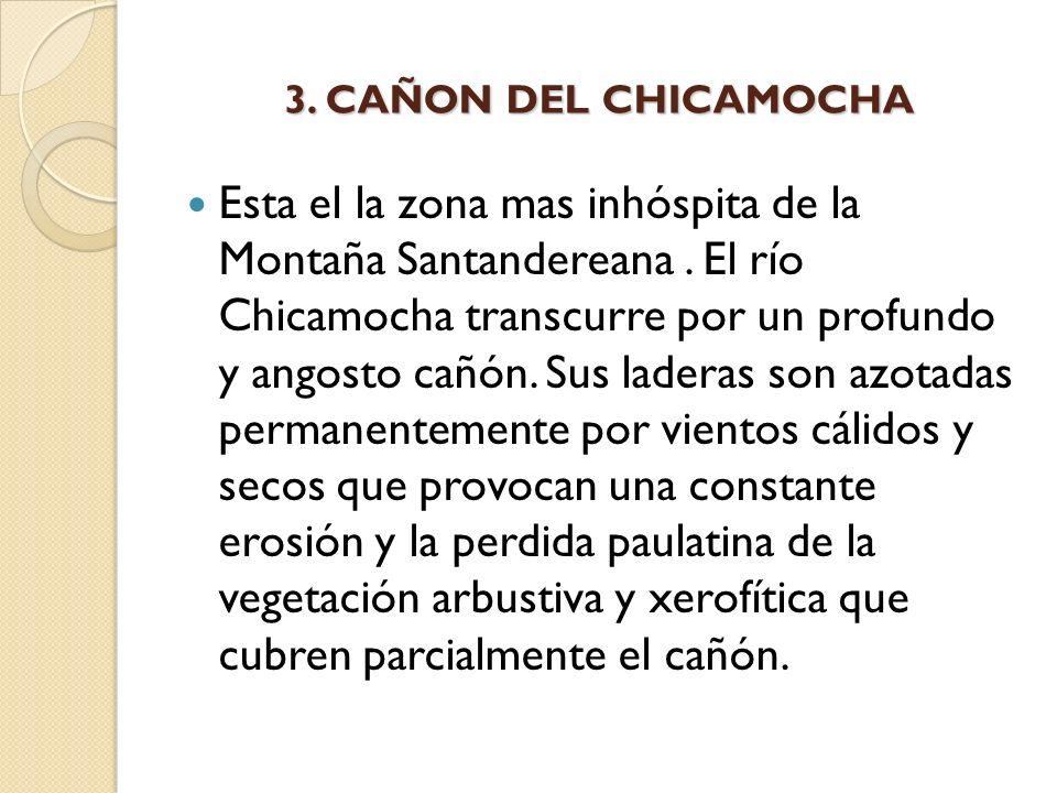 3. CAÑON DEL CHICAMOCHA