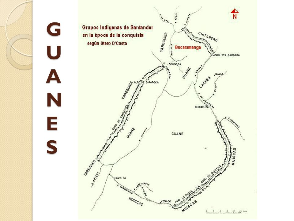 GUANES