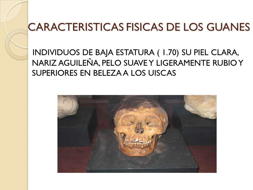 CARACTERISTICAS FISICAS DE LOS GUANES