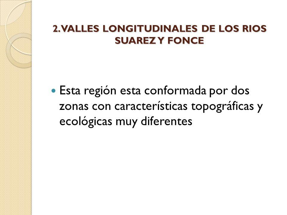 2. VALLES LONGITUDINALES DE LOS RIOS SUAREZ Y FONCE