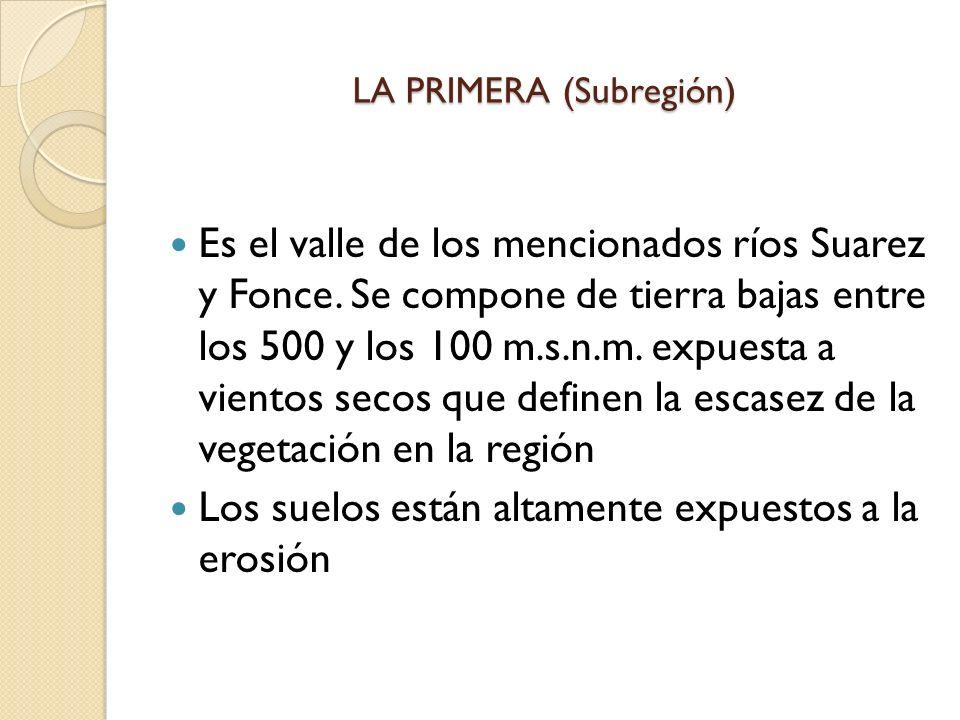 LA PRIMERA (Subregión)