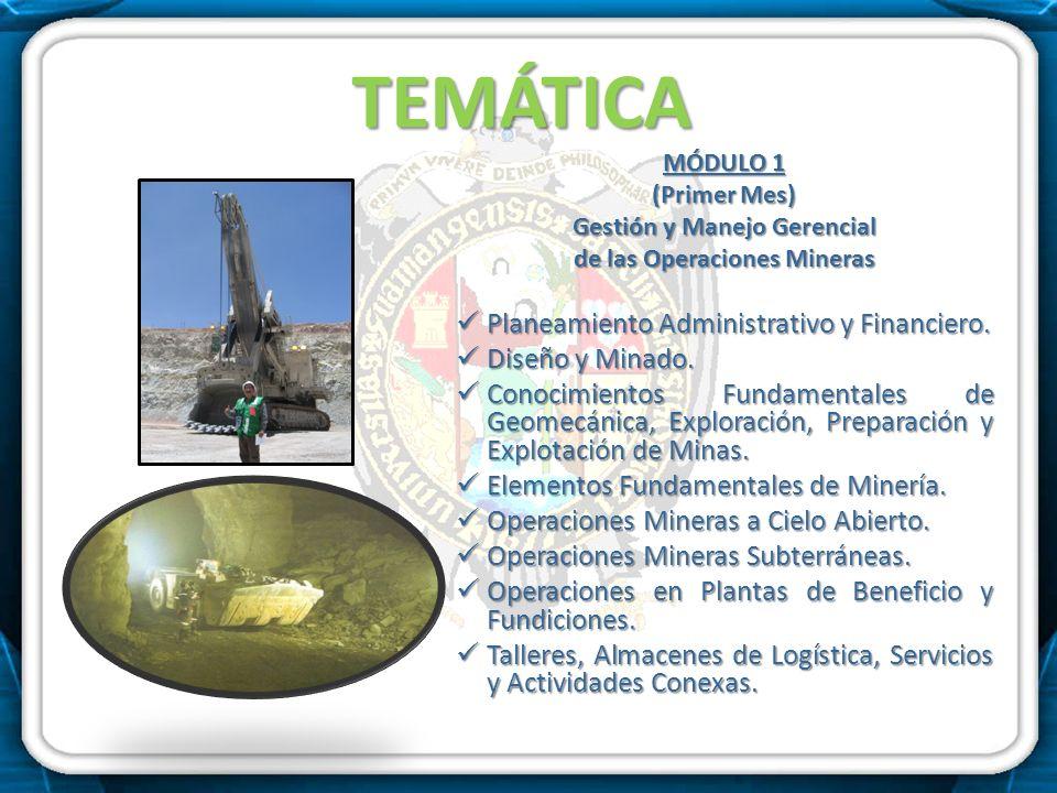 Gestión y Manejo Gerencial de las Operaciones Mineras