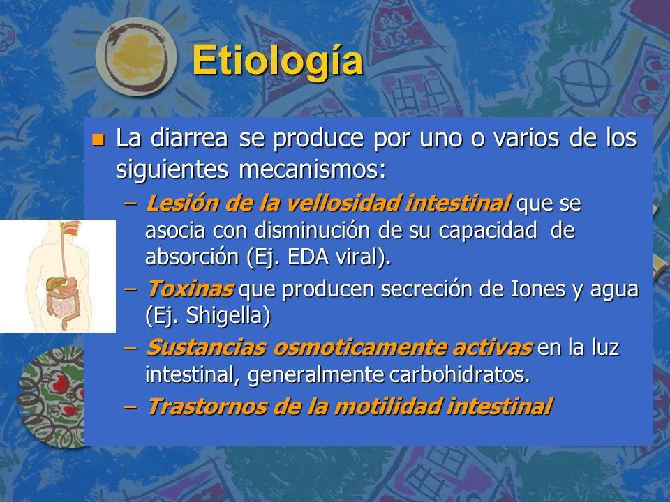 Etiología La diarrea se produce por uno o varios de los siguientes mecanismos: