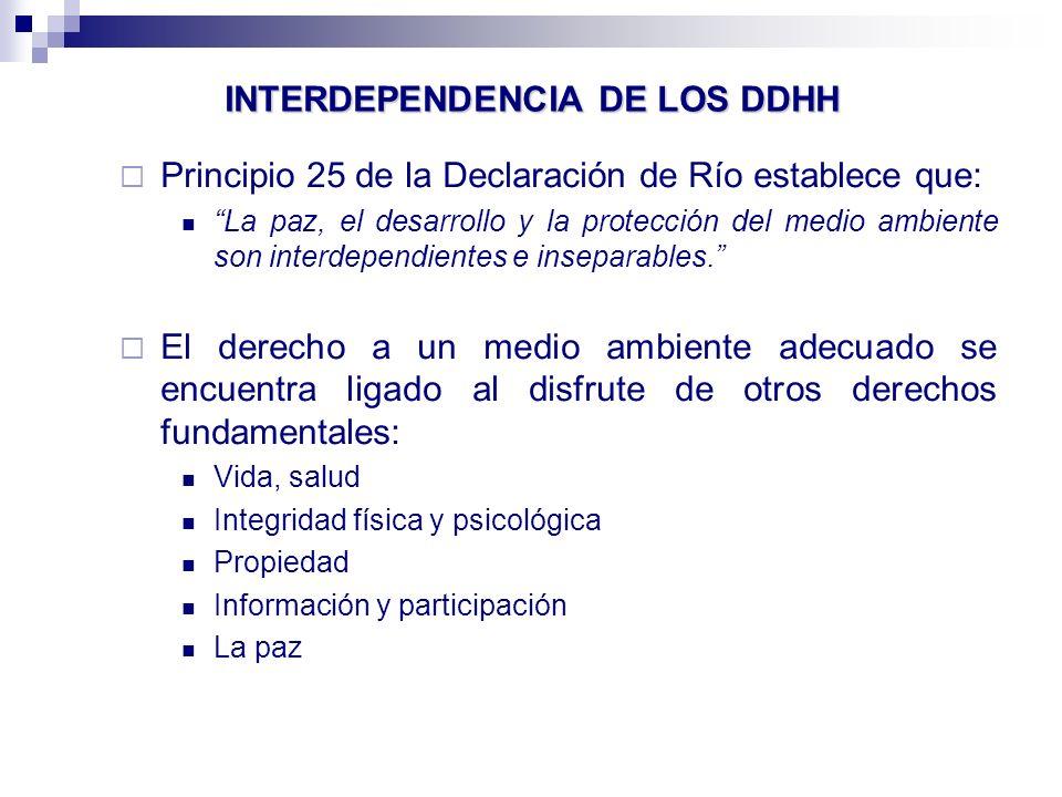 INTERDEPENDENCIA DE LOS DDHH