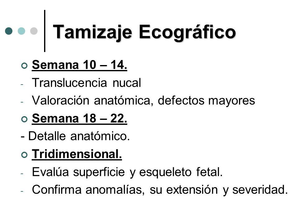Tamizaje Ecográfico Semana 10 – 14. Translucencia nucal