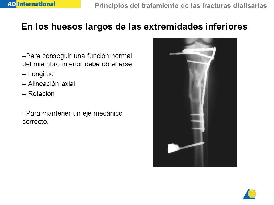 En los huesos largos de las extremidades inferiores