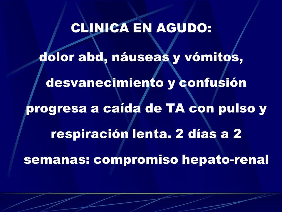 CLINICA EN AGUDO: