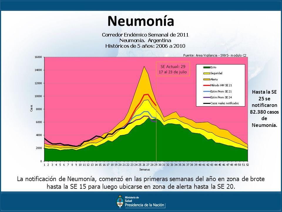 Hasta la SE 25 se notificaron 82.380 casos de Neumonía.