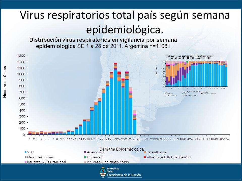 Virus respiratorios total país según semana epidemiológica.