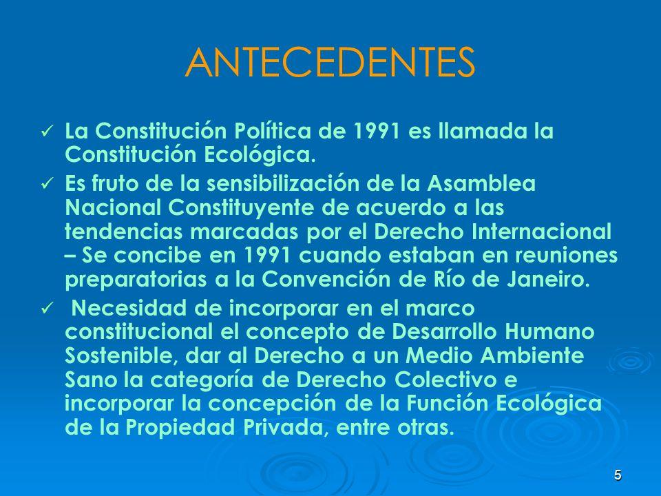 ANTECEDENTES La Constitución Política de 1991 es llamada la Constitución Ecológica.