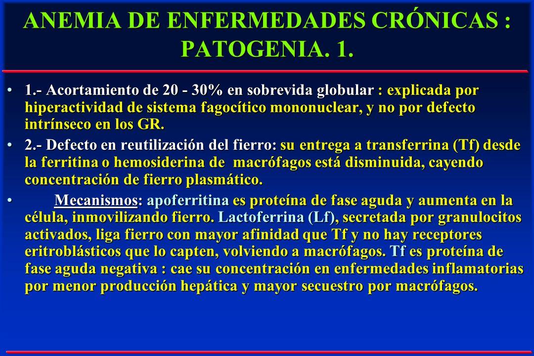 ANEMIA DE ENFERMEDADES CRÓNICAS : PATOGENIA. 1.