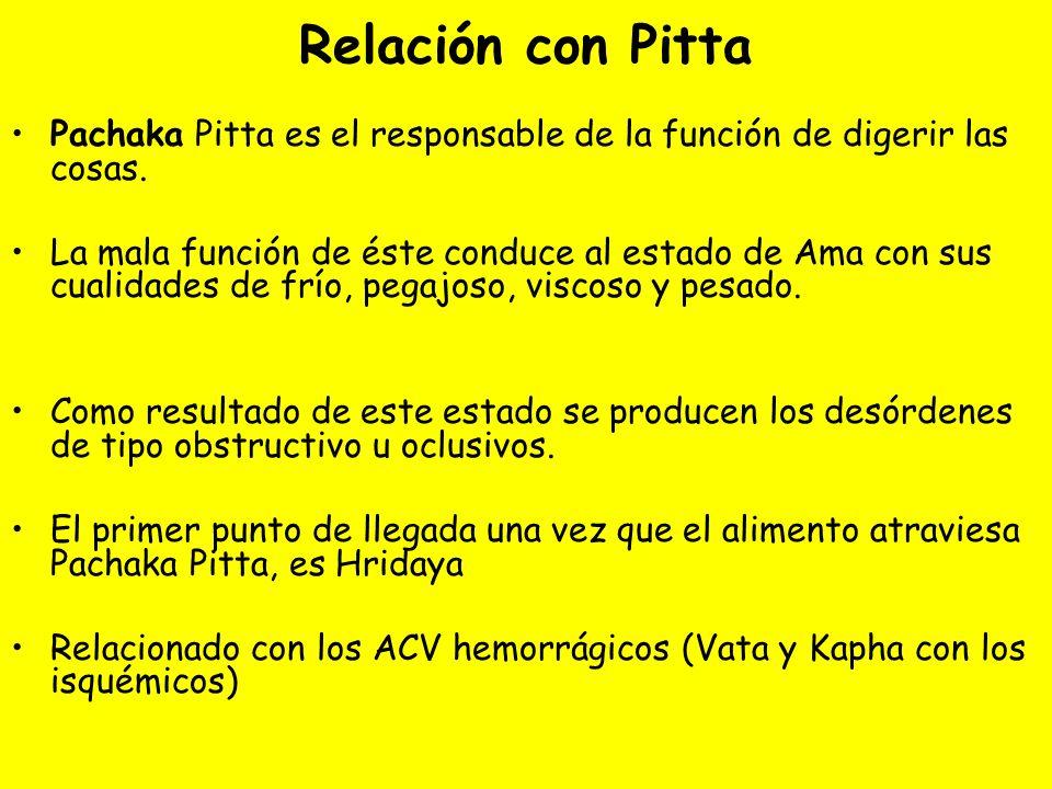 Relación con Pitta Pachaka Pitta es el responsable de la función de digerir las cosas.