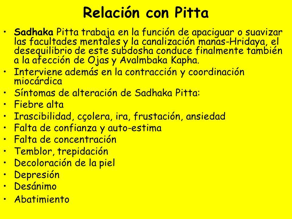 Relación con Pitta